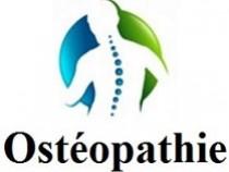 Osteopatia - Cabinete do rato